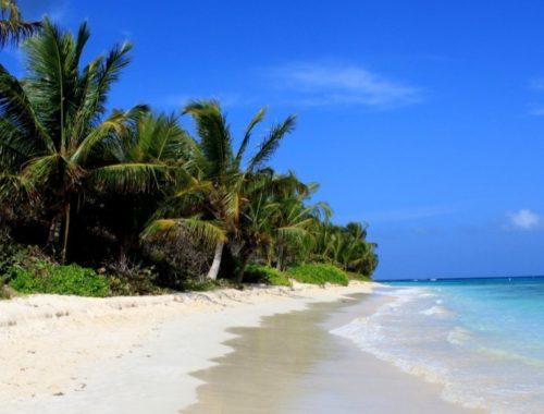 Flamenko Plajı
